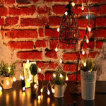 LED Bulbs String Lights - SUPERIORS STORE