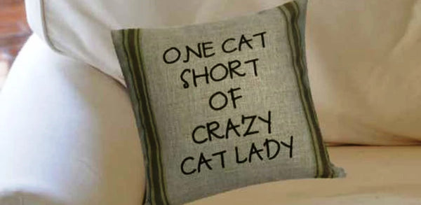 Cute Sayings Pillow Collection