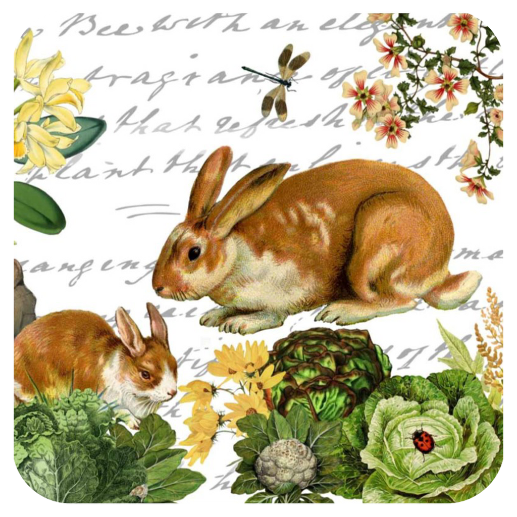 Bunny & Dragonfly Coaster S/6 - Golden Hill Studio
