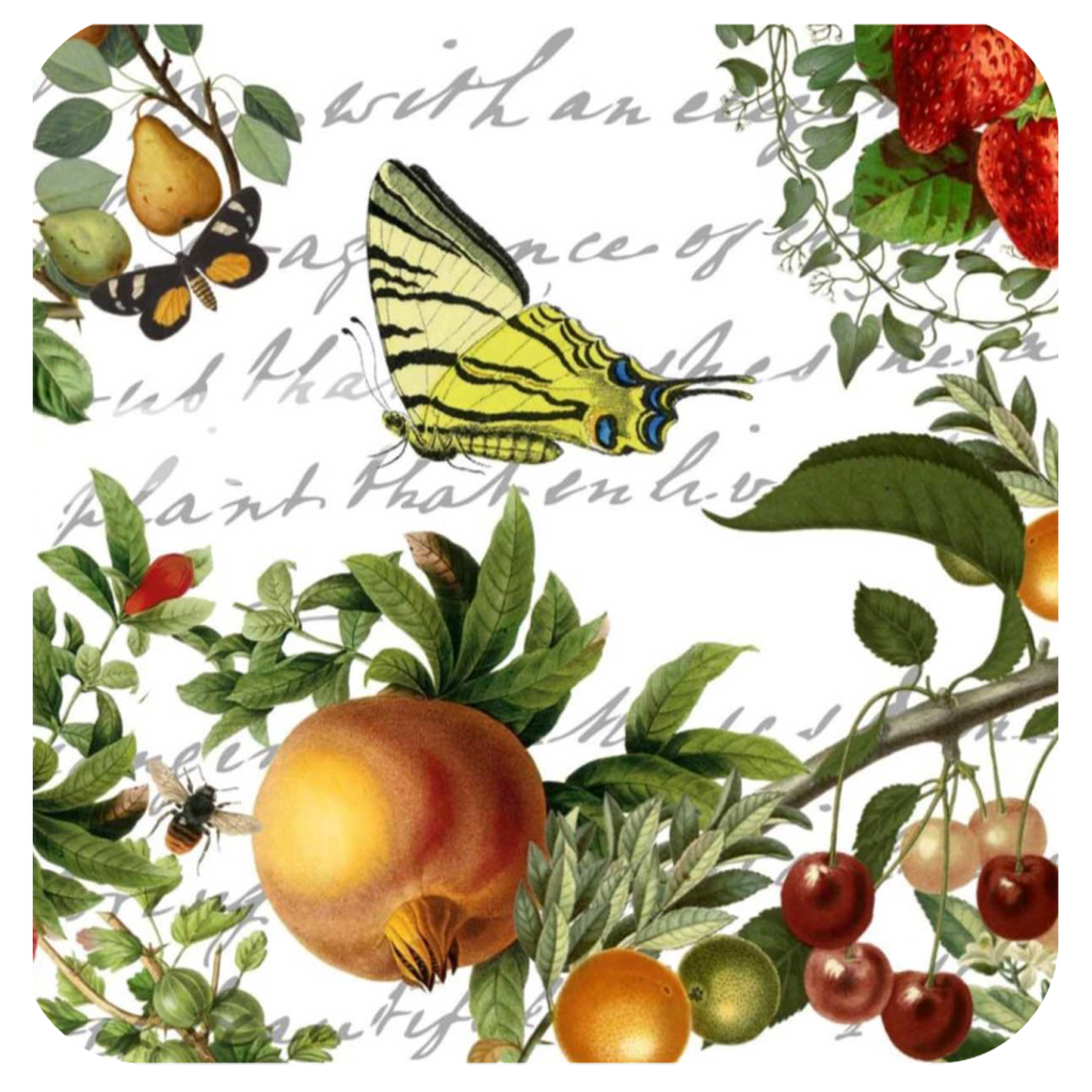 Butterfly & Fruit Coaster S/6