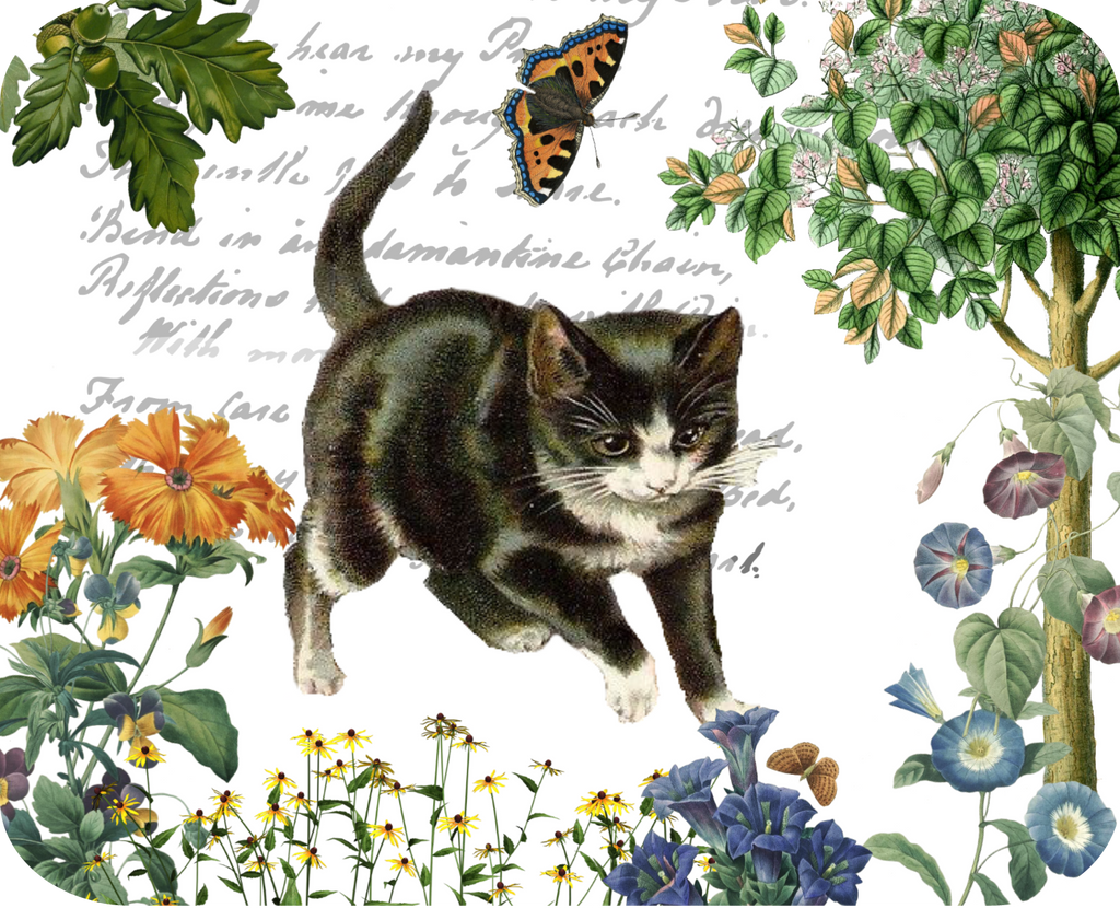 Kitten & Butterfly Botanical - Golden Hill Studio