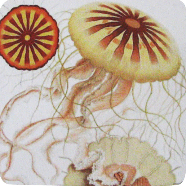Jelly Fish Coaster S/4 - Golden Hill Studio