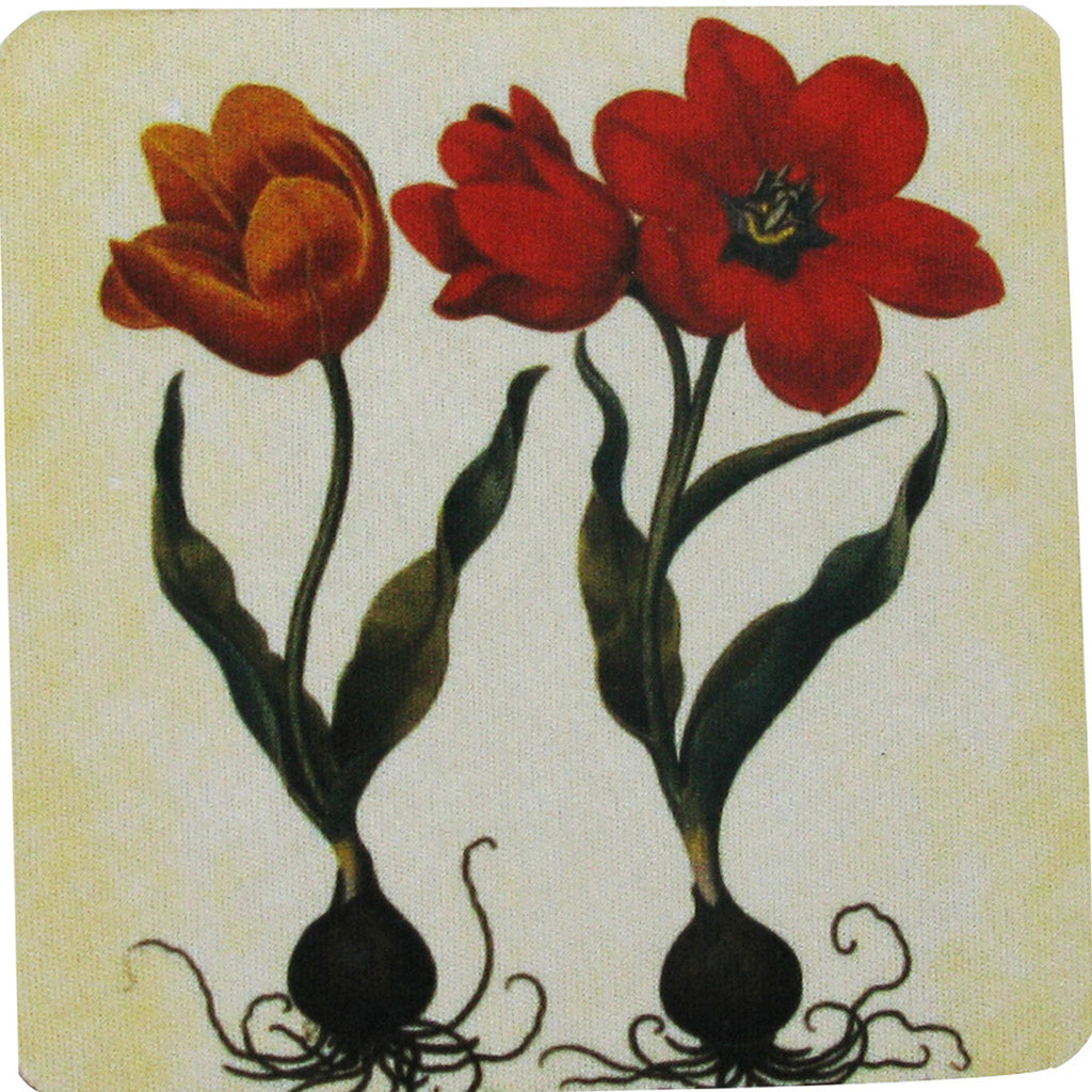 Tulip Set Coaster S/4