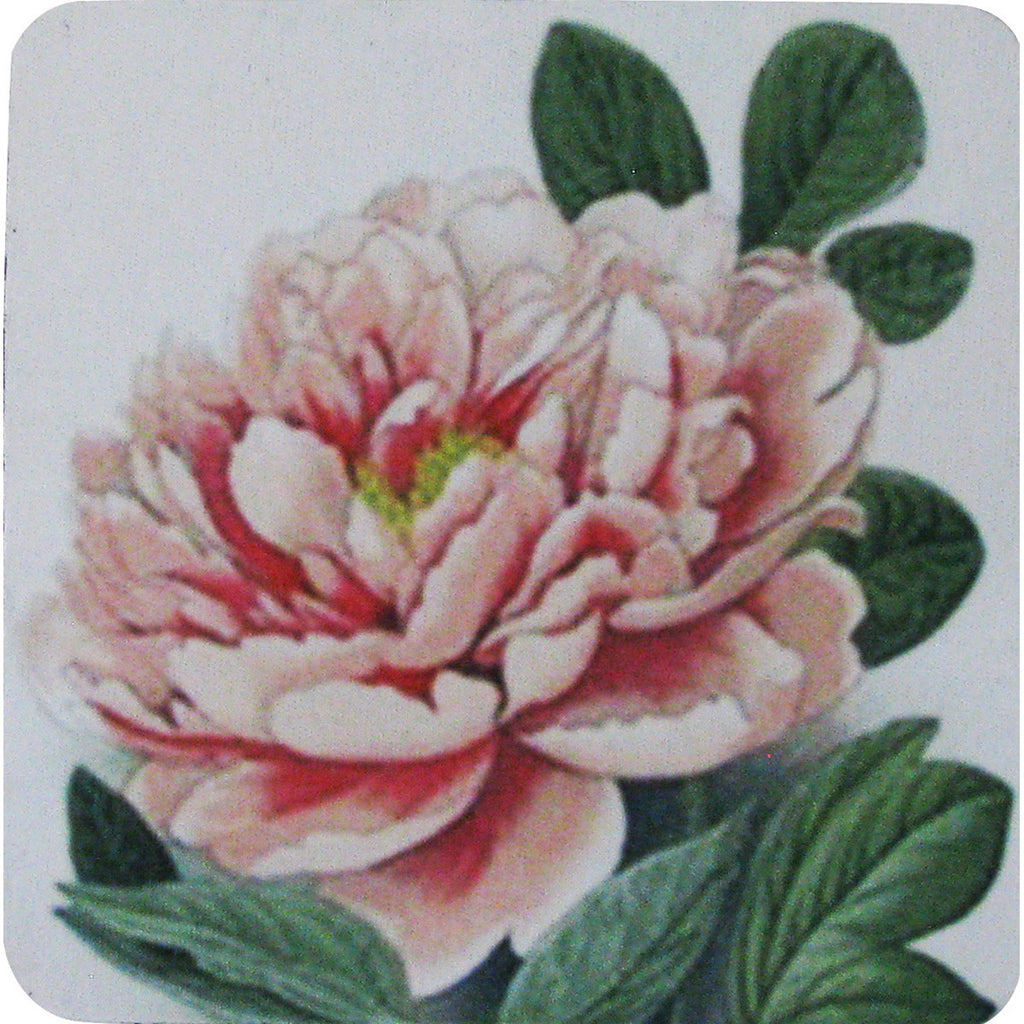 Polynesian Peony Coaster S/4 - Golden Hill Studio