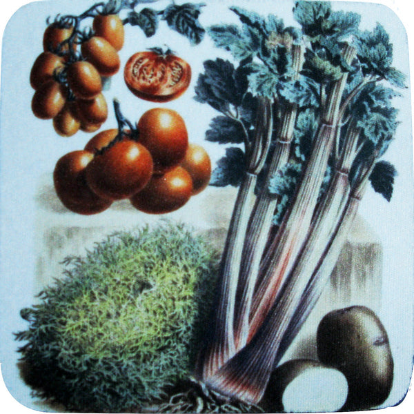 Celery/Tomatoes Coaster S/4 - Golden Hill Studio