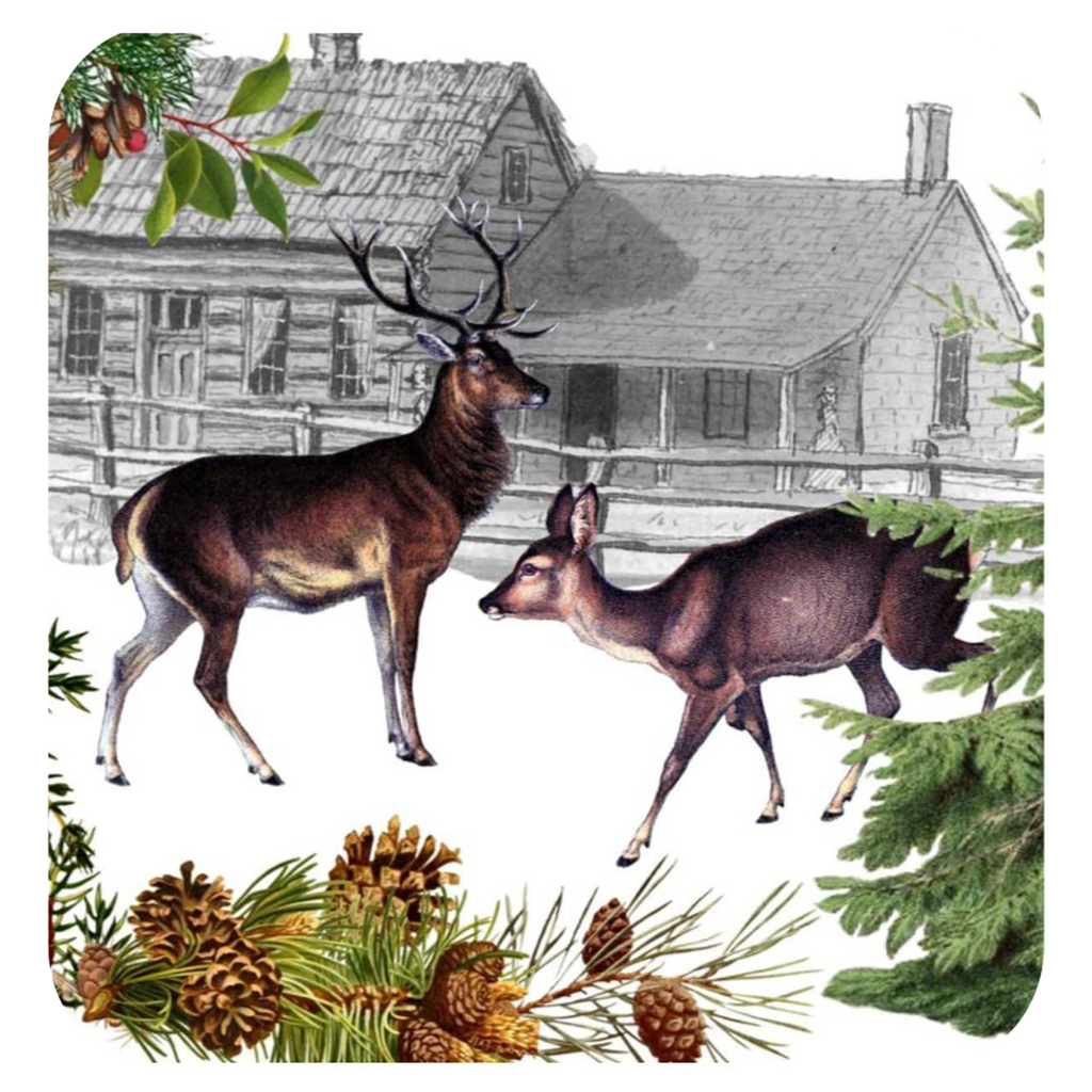 Deer & Doe Coaster S/6 - Golden Hill Studio