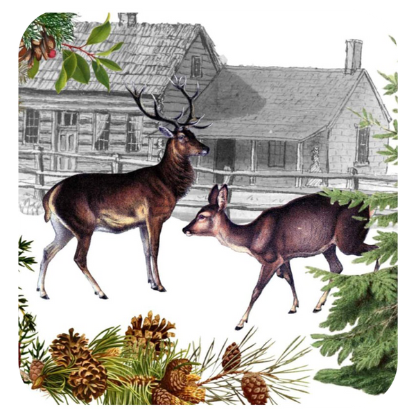 Deer & Doe Coaster S/6