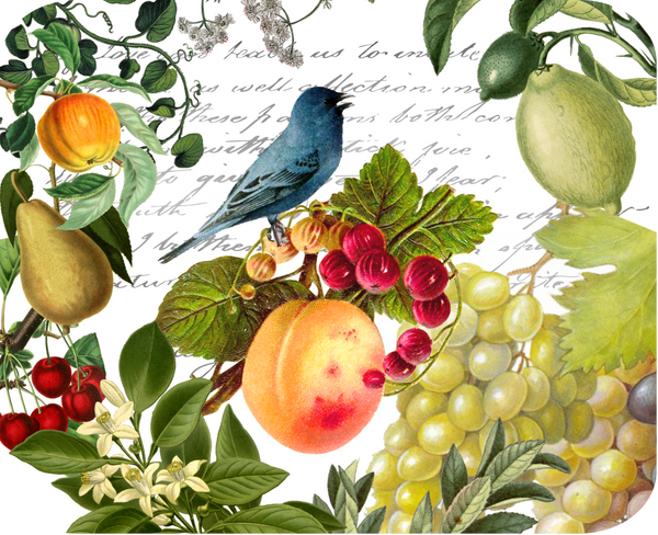 Blue Bird and Fruit Botanical Hot Plate/Mouse Pad 9 1/4 x 7 3/4
