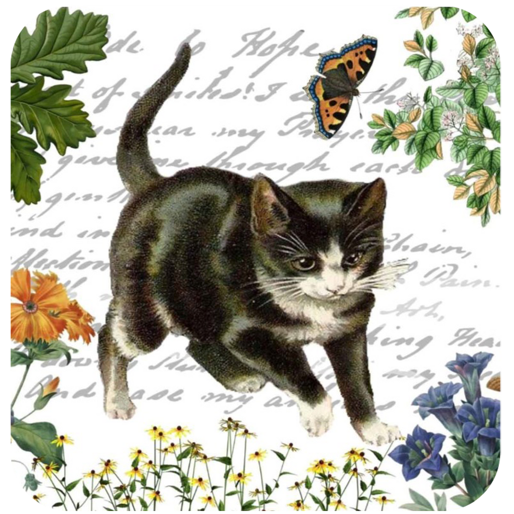 Kitten & Butterfly Coaster S/6 - Golden Hill Studio