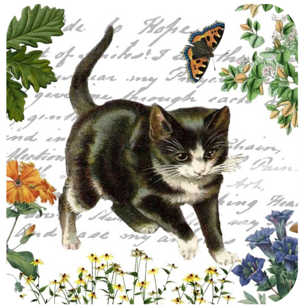 Kitten & Butterfly Coaster S/6