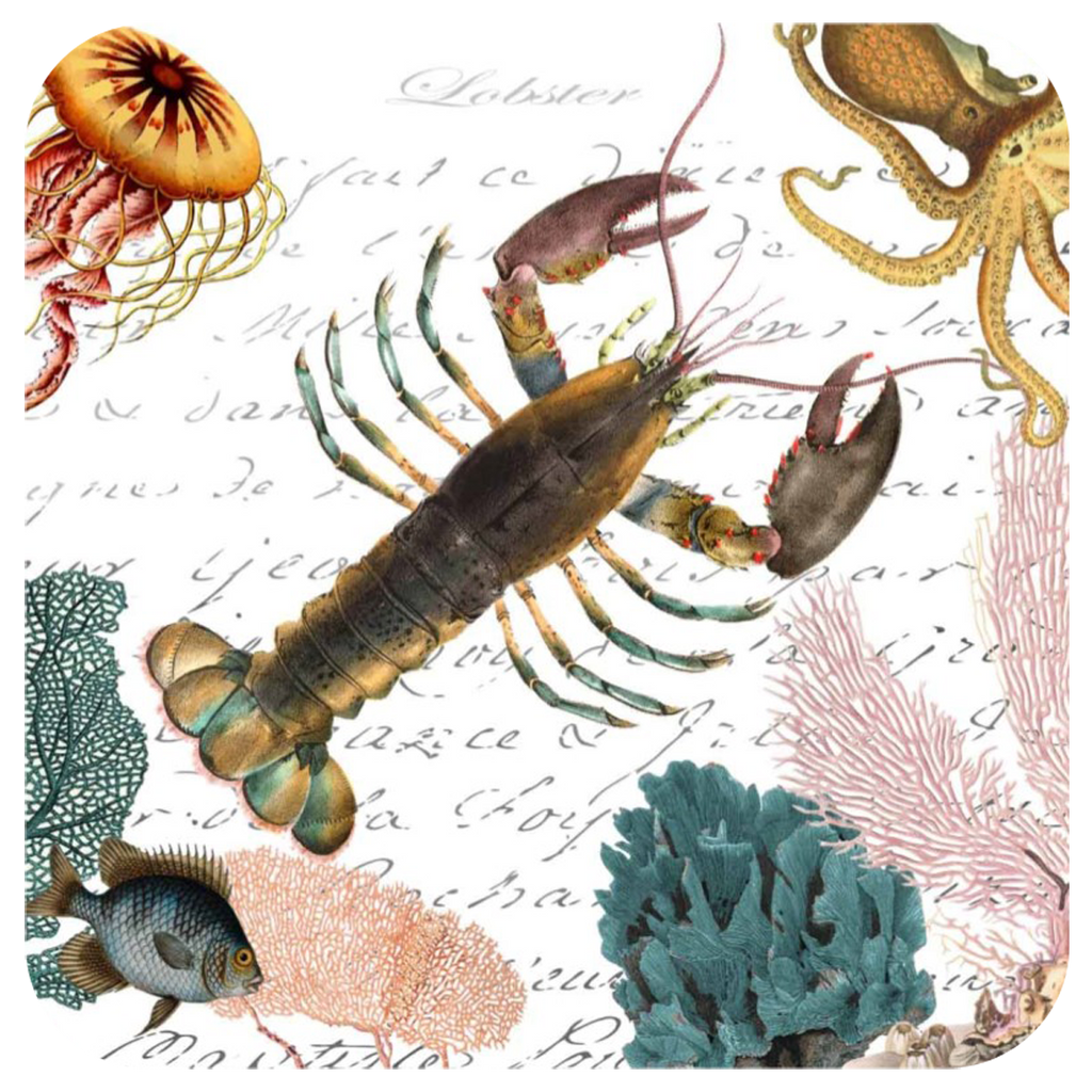 Lobster & Coral Coaster S/6 - Golden Hill Studio