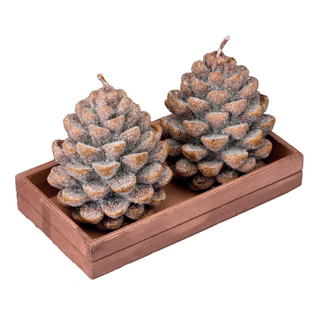 Pine Cone: Candle S/2 Medium - Golden Hill Studio