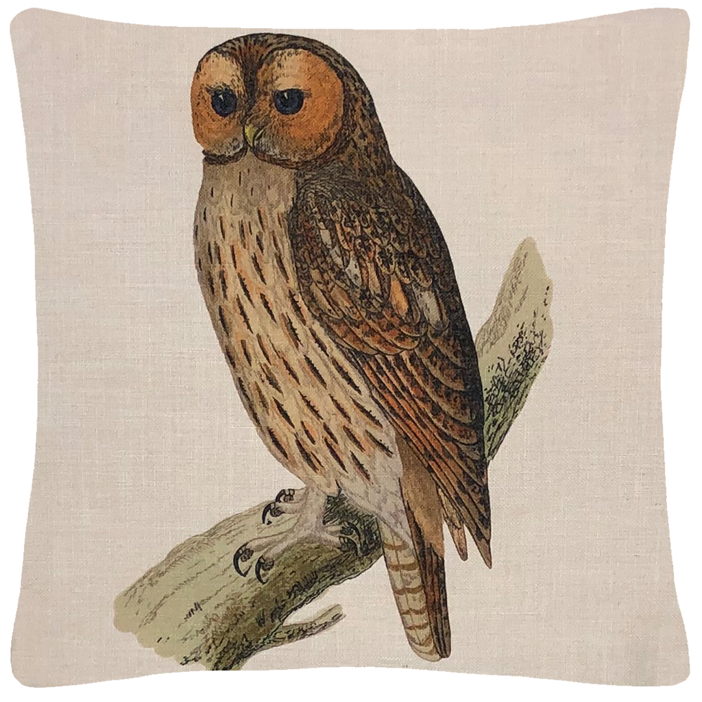 "Owl Pillow  18"" x 18"" - Golden Hill Studio"