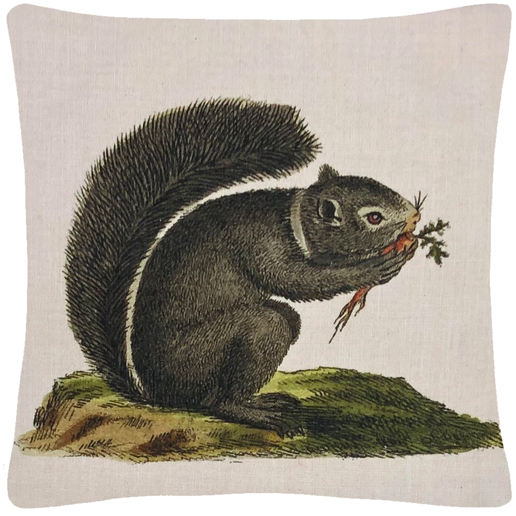 "Squirrel Pillow  18"" x 18"" - Golden Hill Studio"