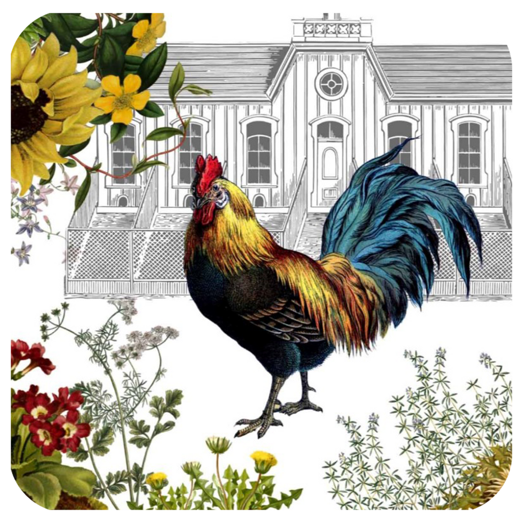 Rooster & Hen House Coaster S/6 - Golden Hill Studio