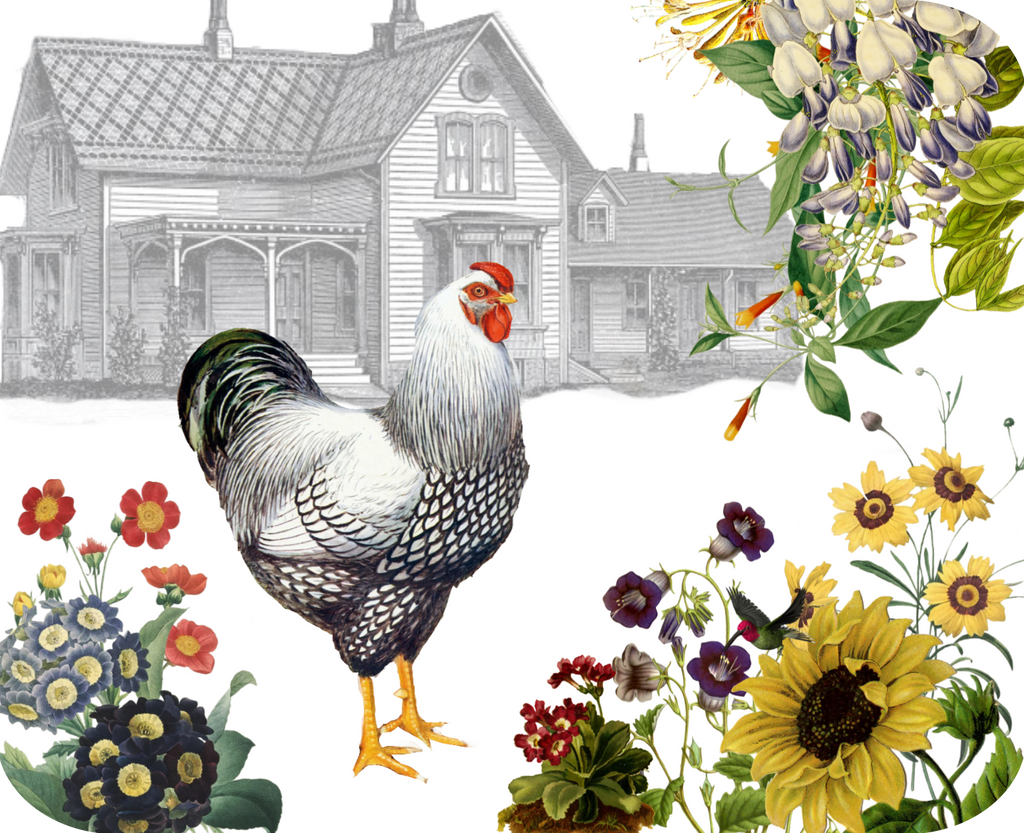 "Hen & Farmhouse Botanical Hot Plate/Mouse Pad  9 1/2"" x 7 3/4"" - Golden Hill Studio"