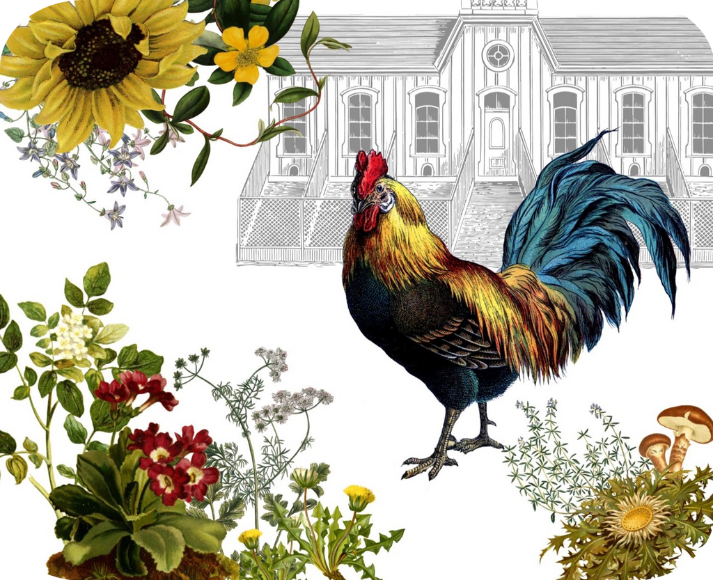 "Rooster & Hen House Botanical Hot Plate/Mouse Pad  9 1/2"" x 7 3/4"""