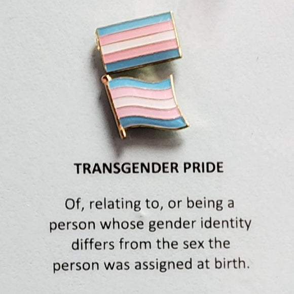 Enamel  Pride Flag Lapel Pin Trans Pride Wavy & Rectangle