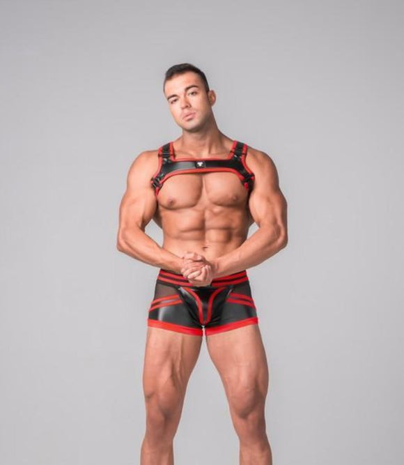 Masculine Model with bulldog harness that has a black base color with red trim. Small designer logo located in the front center of the item.  Item is made of leather-looking black spandex.