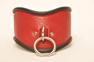 Red posture collar with black piping and a single ring.