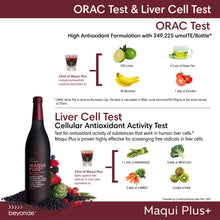 Load image into Gallery viewer, Maqui Plus Botanical Beverage Mix