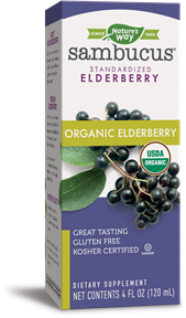 NATURE'S WAY SAMBUCUS ELDERBERRY ORGANIC SYRUP 4OZ