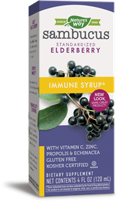 NATURE'S WAY SAMBUCUS ELDERBERRY IMMUNE SYRUP 4OZ