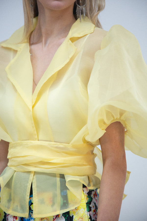 Organza Notch Collar Top