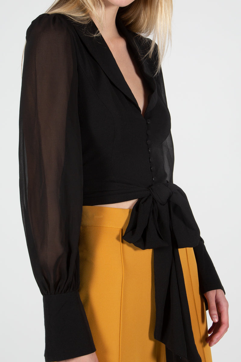 Delicate Shawl Collar Blouse