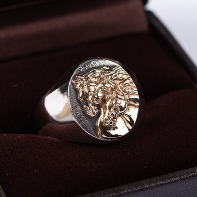Peanuts & Co Pharaoh's Horse Ring - Oval - Silver x 10K Gold - Standard & Strange
