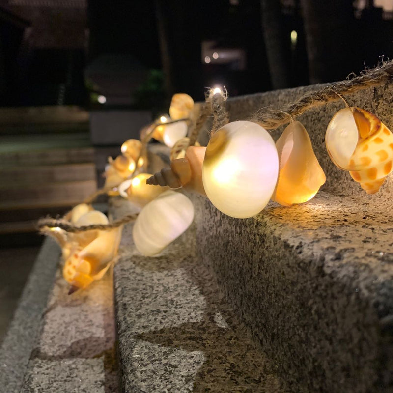 Natural Seashell LED String Light