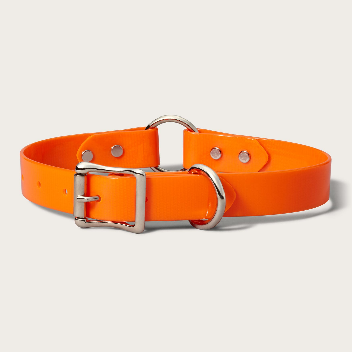 Filson Webbing Dog Collar - Blaze Orange