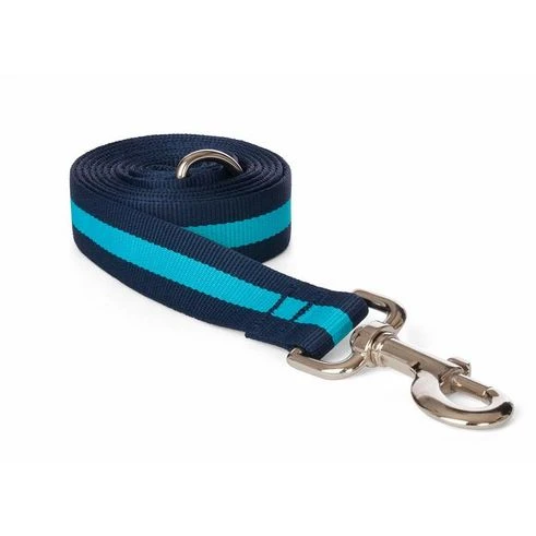"Fabdog Blue Stripe Leash - Small 5/8"" x 5"""