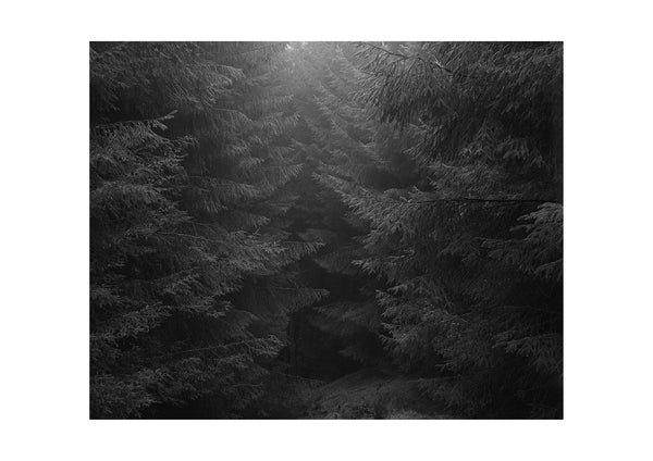 Untitled Al Brydon photograph print
