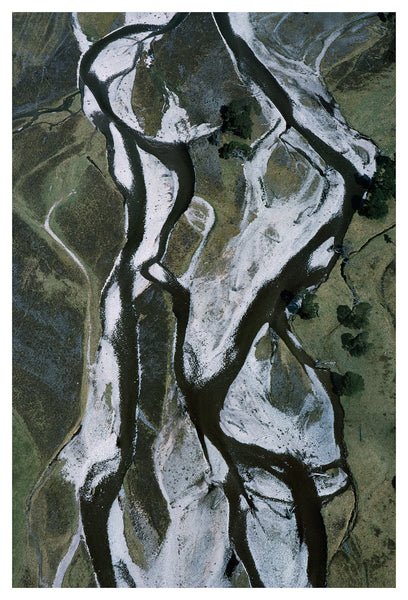 Braided river and ancient Caledonian pines, Glen Feshie, Cairngorms, Patricia Macdonald photograph print