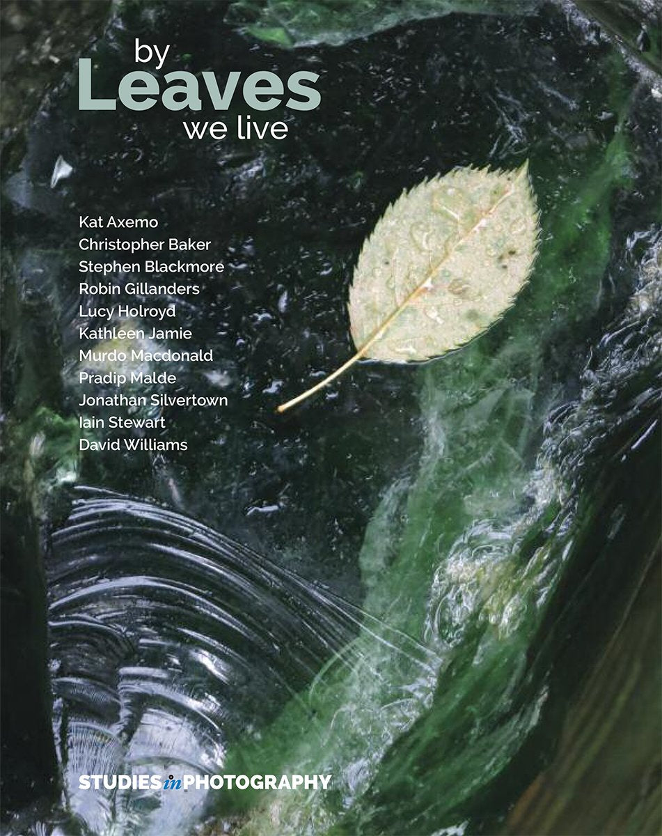 Leaves studies in photography journal