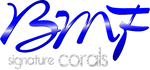 BMFsignaturecorals.com