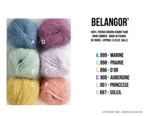 Load image into Gallery viewer, Belangor Angora Yarn
