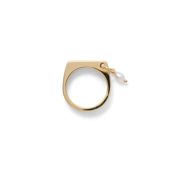 Pierced Signet Ring in Gold
