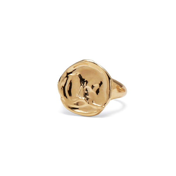 Palette Signet Ring in Gold
