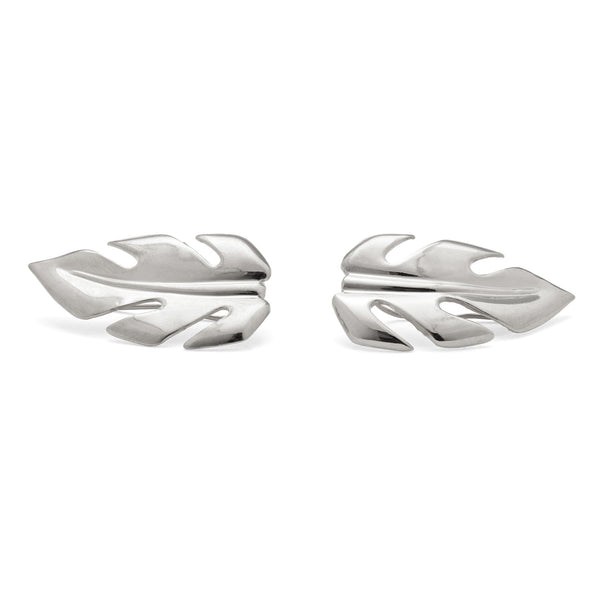 Stera Ear Crawlers in Silver