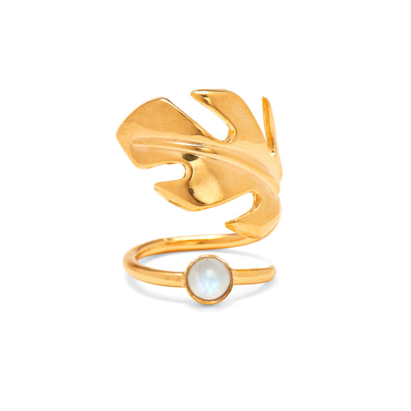 Stera Moonstone Ring in Gold
