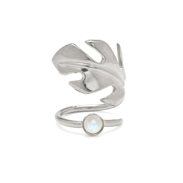 Stera Moonstone Ring in Silver
