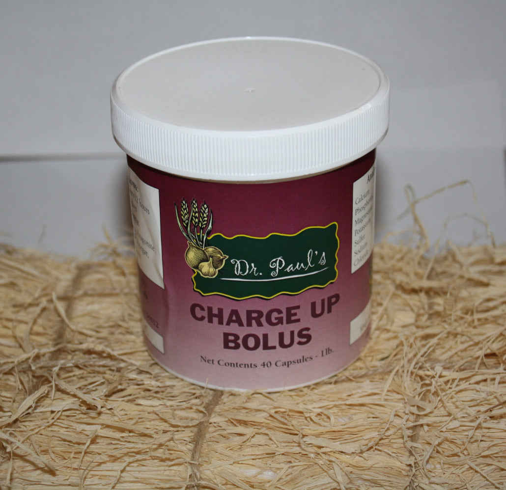 Charge-Up Bolus