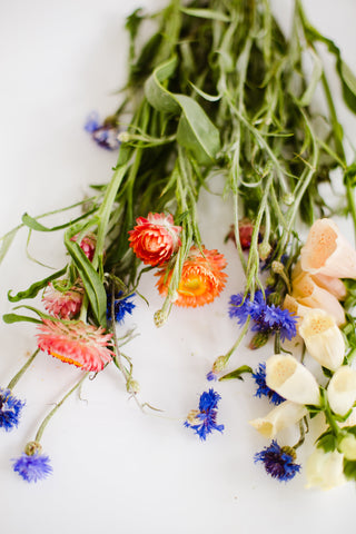 Cut Flowers in Blue White and Orange