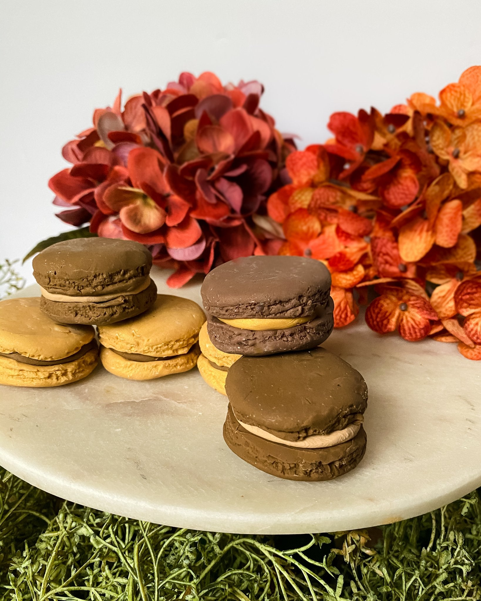 Everything Dawn Fake Macarons Faux French Macarons Chocolate