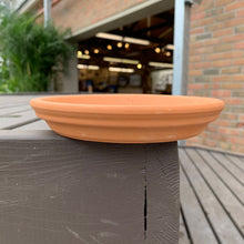 "Load image into Gallery viewer, 6"" Standard Terra Cotta Clay Saucer"