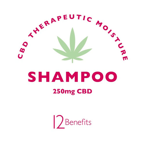 CBD Shampoo / Accepting Pre-orders Now
