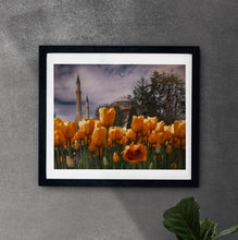 Load image into Gallery viewer, Tulip Season in Istanbul