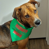 Naughty is the New Nice Bandana - FunDogBandanas